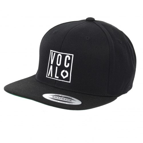 Vocal BMX Box Logo Snapback Hat